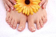 Closeup photo of a beautiful female feet with pedicure.  Royalty Free Stock Images