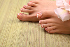 Closeup photo of a beautiful female feet with pedicure.  Stock Images