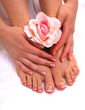 Closeup photo of a beautiful female feet with pedicure.  Royalty Free Stock Image