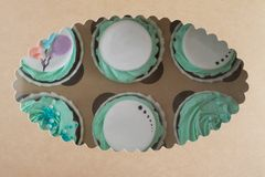 Closeup photo of colorful cupcakes in paper box royalty free stock images