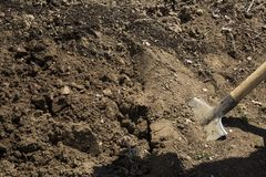 Digging the soil. A closeup photo of digging the soil with a shovel royalty free stock photography