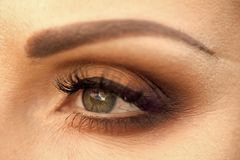 Closeup photo of eye royalty free stock images