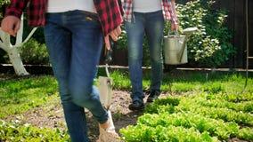 Closeup photo of family walking at backyard garden with gardening tools. Closeup image of family walking at backyard garden with gardening tools Stock Photography