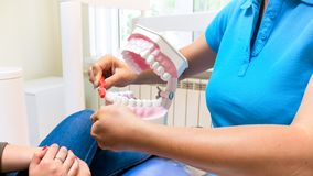 Closeup photo of female dentist showing how to properly use toothbrush for teeth hygiene. Closeup image of female dentist showing how to properly use toothbrush Stock Photography
