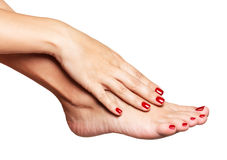 Closeup photo of a female feet with beautiful red pedicure Royalty Free Stock Images