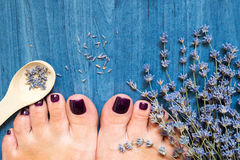 Closeup photo of a female feet with pedicure on nails and lavend. Er. at spa salon. Legs care concept Stock Image