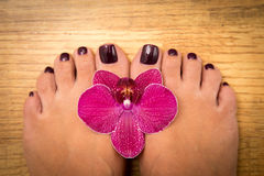 Closeup photo of a female feet with pedicure on nails and orchid. At spa salon. Legs care concept Stock Image