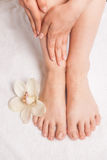 Closeup photo of female feet at spa salon on pedicure procedure. Royalty Free Stock Photography