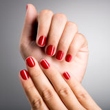 Closeup photo of a female hands with red nails Royalty Free Stock Photos