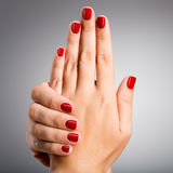 Closeup photo of a female hands with red nails Stock Image