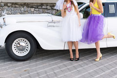 Closeup photo of girls celebrating a bachelorette party with bride stock photo