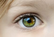 Closeup Photo of Human Eye Royalty Free Stock Photography