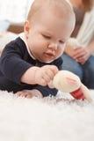 Closeup photo of playing baby girl Stock Photos