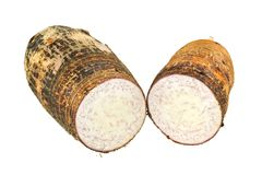 Closeup photo of Taro, root vegetable Stock Images