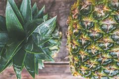 Closeup Photo of Two Pineapples Stock Image