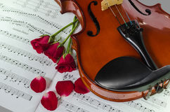Closeup photo of violin and roses Stock Photos