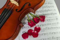 Closeup photo of violin and roses. On note sheet Stock Photo