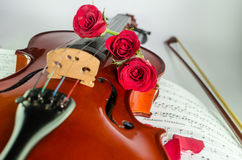 Closeup photo of violin and roses. On note sheet Stock Images