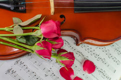 Closeup photo of violin and roses. On note sheet background Stock Images