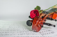 Closeup photo of violin and roses. On note sheet with text space Stock Photos