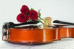 Closeup photo of violin and roses. On note sheet with text space Royalty Free Stock Photography