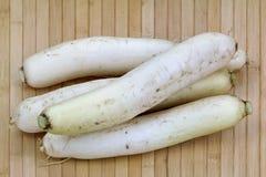 Closeup photo of white Radish (Daikon) Stock Images