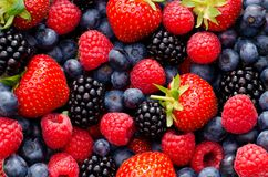 Closeup photo of wild berries strawberries, raspberries, blackberries, blueberries. This image shows a closeup taken from different wild berries, including royalty free stock image