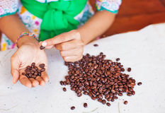 Closeup photo of woman choosing the coffee beans. Of the best quality Stock Images