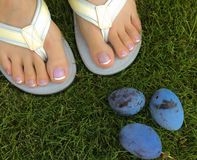 Closeup photo of woman feet in flip flop standing on green grass royalty free stock image