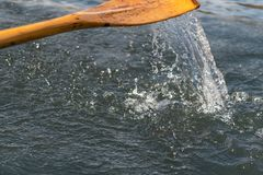 Closeup photo of wooden paddle used for rowing. Paddle rowing in the water, lake Bled on a sunny day. Closeup photo of wooden paddle used for rowing in the water royalty free stock photos