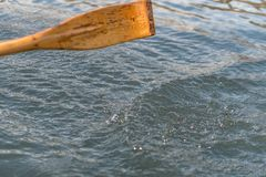 Closeup photo of wooden paddle used for rowing. Paddle rowing in the water, lake Bled on a sunny day. Closeup photo of wooden paddle used for rowing in the water royalty free stock image