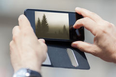 Closeup of photographing nature with smart phone Royalty Free Stock Photos