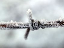 Closeup Photography of Ice Covered Metal Wire Stock Images