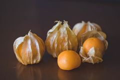 Closeup Photography of Psysaliss Fruit Royalty Free Stock Photography