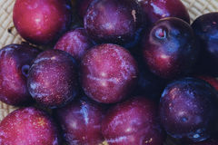 Closeup Photography of Purple Round Fruits Royalty Free Stock Images