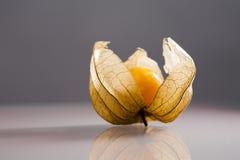 Closeup of Physalis peruviana fruits with reflexions Royalty Free Stock Photos