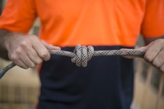 Closeup pic of male rope access industrial worker, inspecting tying a knot into static twin ropes before working and abseiling stock image
