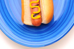 Closeup Picnic Table with hot dog on plate Royalty Free Stock Photo