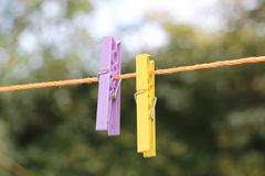 Homeland orange tree in turkeypurple and yellow clothespin royalty free stock photos