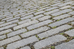 Closeup picture of grey stone block paving. Grey and green colors Stock Images