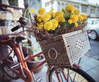 Closeup picture of a vintage bike with flowers in a basket royalty free stock photography