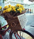 Closeup picture of a vintage bike with flowers in a basket stock images