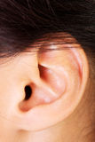 Closeup picture of woman's ear royalty free stock photo