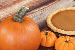 Closeup of a pie pumpkin Royalty Free Stock Photography