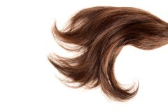 Closeup piece of brown hair Stock Images