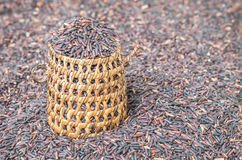 Closeup pile of black rice called riceberry rice with wooden wickerwork, rice with high nutrients on blurred riceberry textured ba Royalty Free Stock Photos