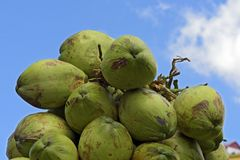 Closeup of pile of coconuts. On blue sky background, in the wholesale market of Largo do Pari. Sao Paulo, Brazil Stock Photo