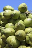 Closeup of pile of coconuts. On blue sky background, in the wholesale market of Largo do Pari. Sao Paulo, Brazil Stock Photos