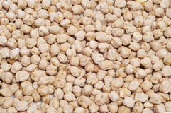 Dried chickpeas Stock Photography