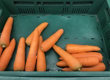 Closeup pile of fresh carrots at for display at supermarket. Health eating concept Royalty Free Stock Photo